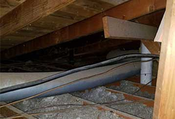 Attic Insulation Removal Services | Attic Cleaning San Francisco, CA