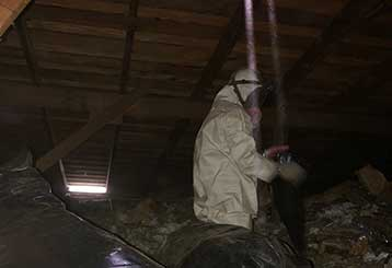 Attic Cleaning in Presidio | Attic Cleaning San Francisco